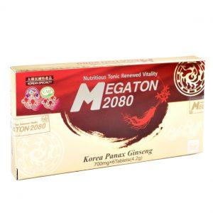 Hanil Megaton 2080 6 tab
